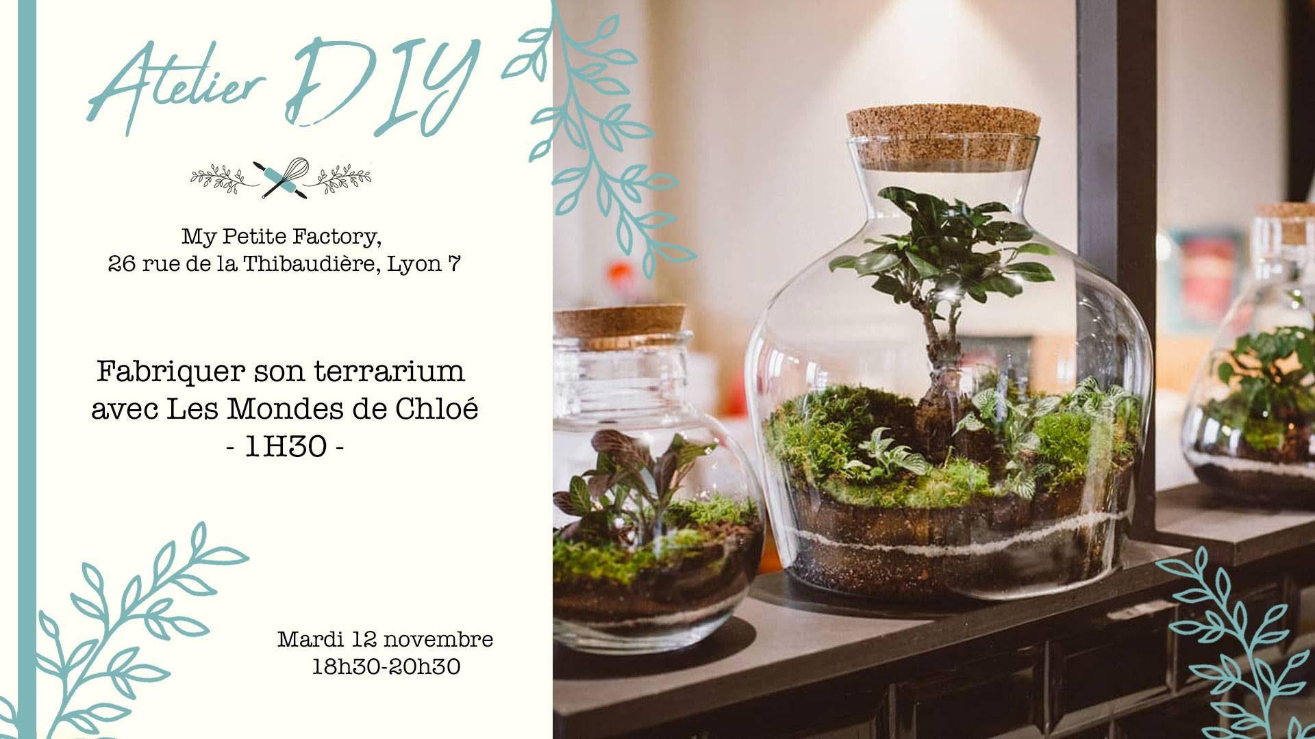 atelier-fabriquer-son-terrarium